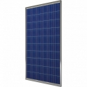 Солнечные панели EverExceed Polycrystalline ESM150-156 (150W)